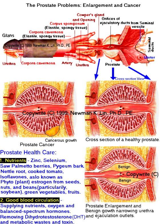 urethritis from masturbation